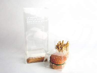 OBESITY AND TRANSPARENCE- image