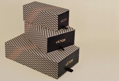 VICTOR ALFARO- image