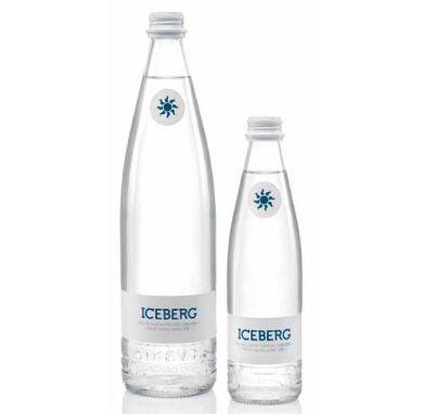 GALVANINA ICEBERG- image