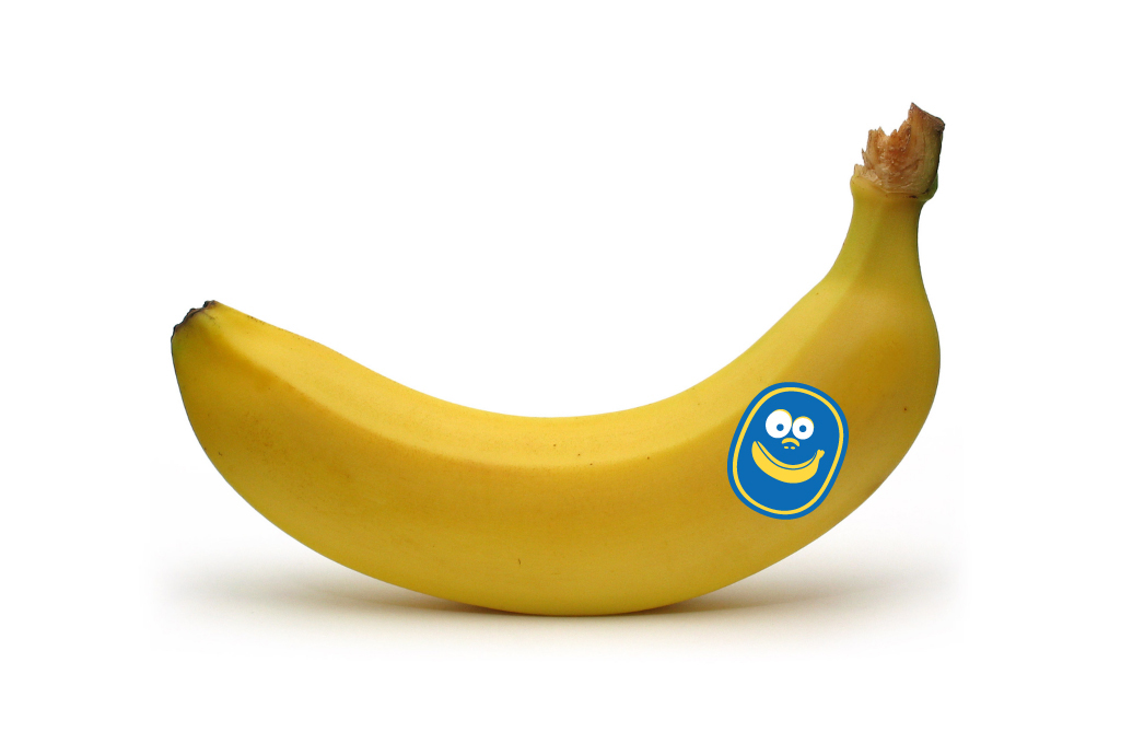 Case Report: Blood Bananas: Chiquita in Colombia Essay Sample